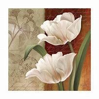 tulip40.jpg