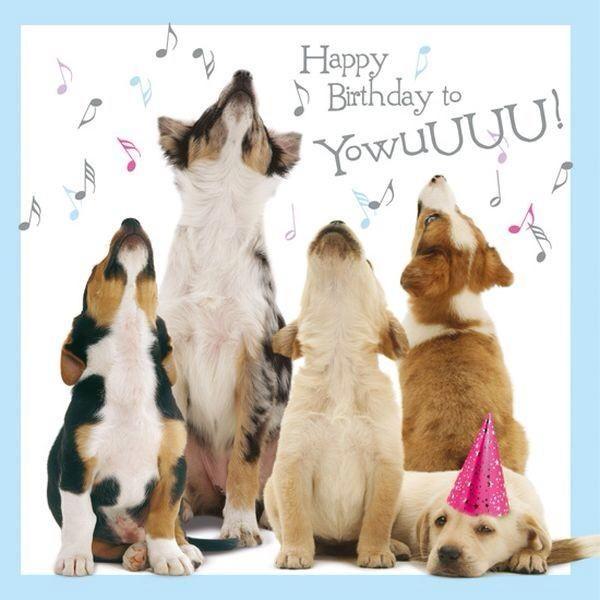Adge Happy Birthday Thread Sane Forums