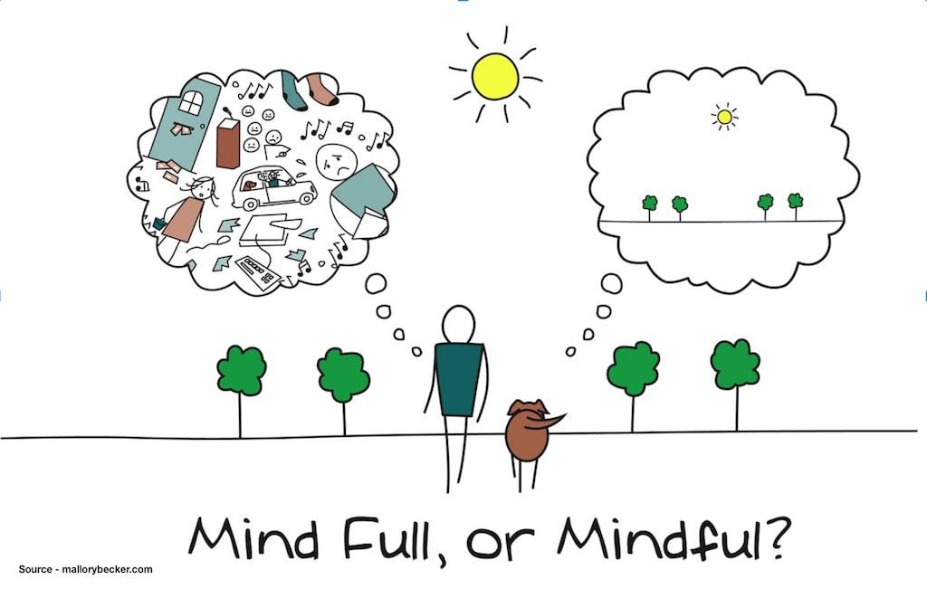 Mind Full or Mind ful image.jpg