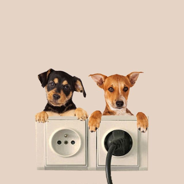 Hole-View-Vivid-Cats-Dog-3D-Wall-Sticker-Bathroom-Switch-Living-Room-Kitchen-Decor-Animal.jpg_640x640.jpg