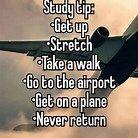 take a flight.jpg