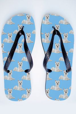 Flip_Flop_Dog_Westhighland_Terrier_Blue_Thongs.jpg