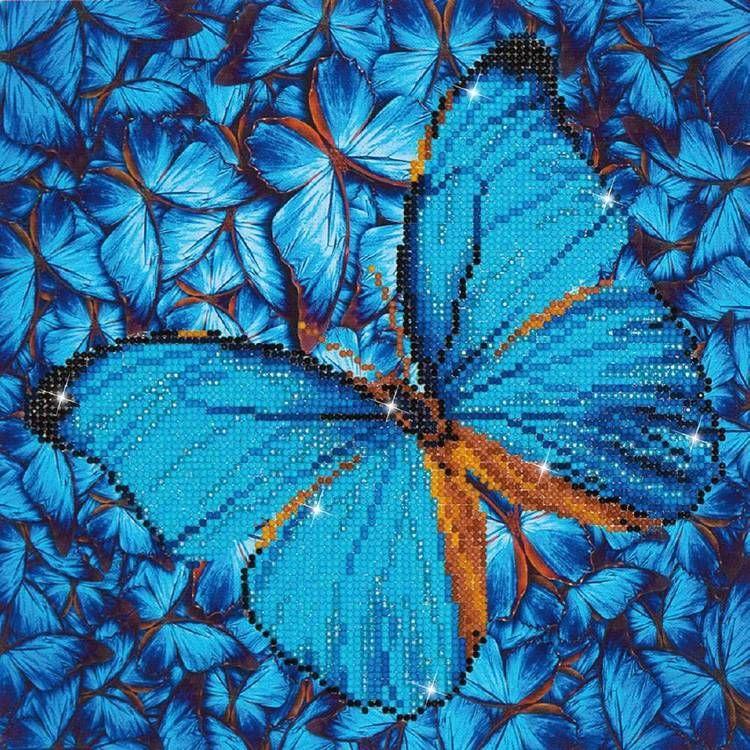 BP80440409-multicoloured.jpeg.jpg