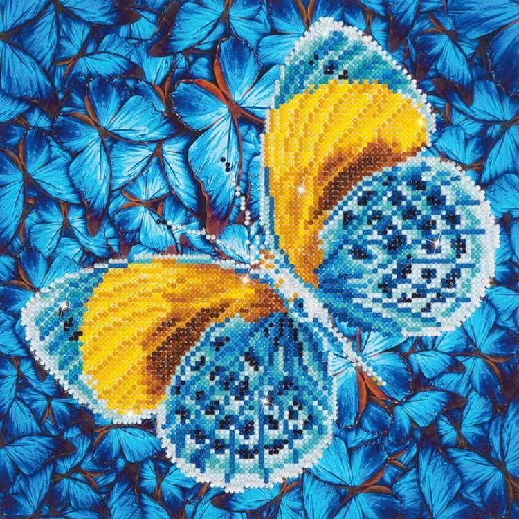 BP80440410-multicoloured.jpeg.jpg