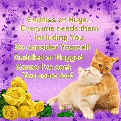 cat cuddles.jpg
