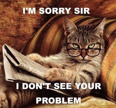 cat_memes_23.jpg
